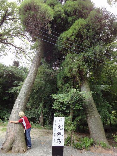 220612 小木阿蘇神社7
