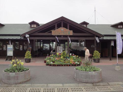 220624 くじゅう花公園1