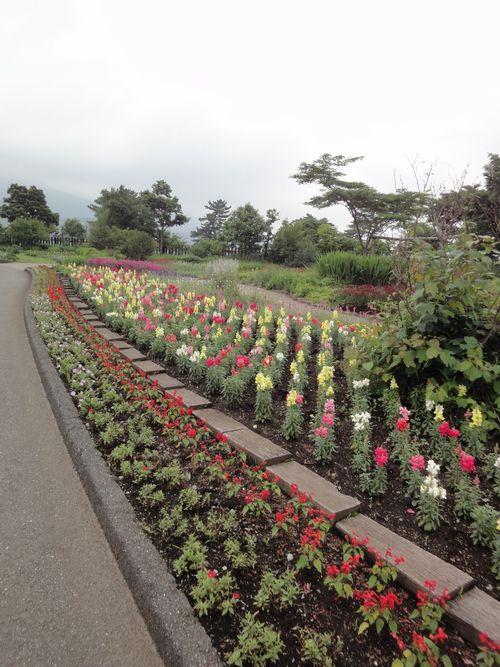 220624 くじゅう花公園21