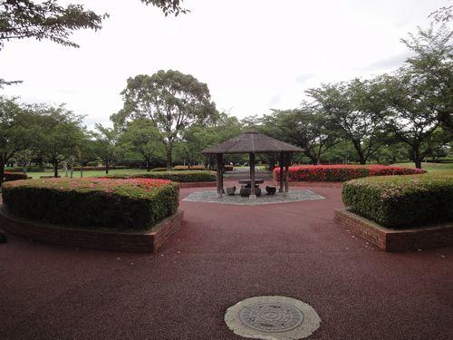 220612 柿原公園3