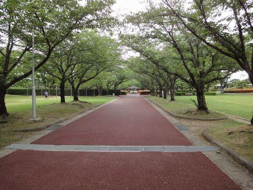 220612 柿原公園1