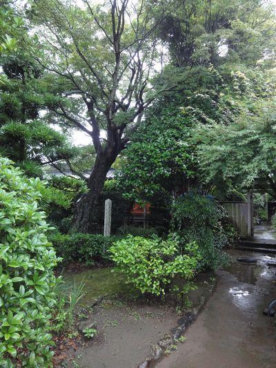 220703 竹添邸3