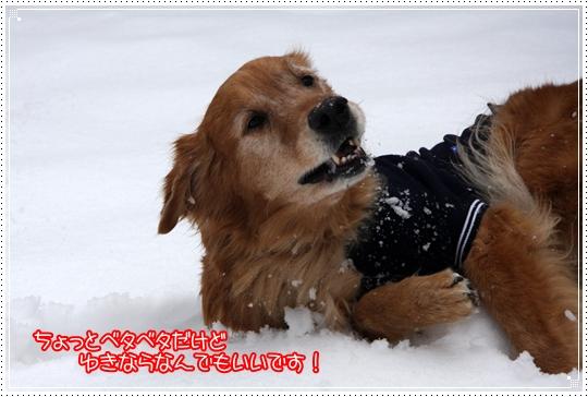 2010,1,15雪遊び2