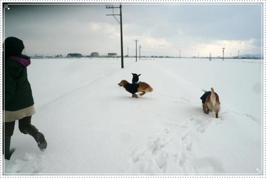 2010,1,15雪遊び18
