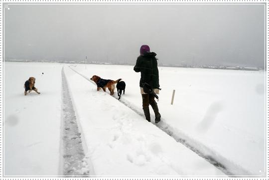 2010,1,15雪遊び15