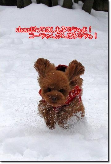 2010,1,16雪遊び10