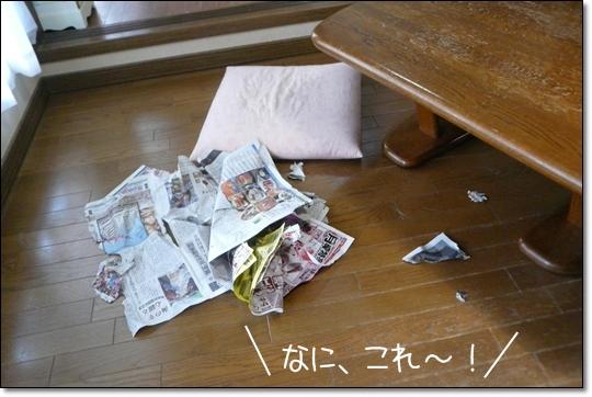 2010,1,17お散歩9