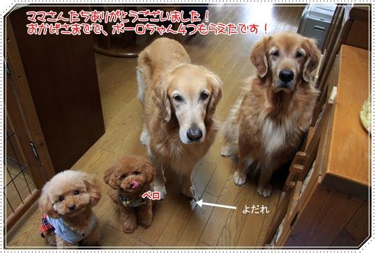 2010,1,22お散歩8