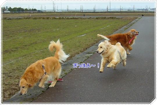 2010,1,23お散歩4