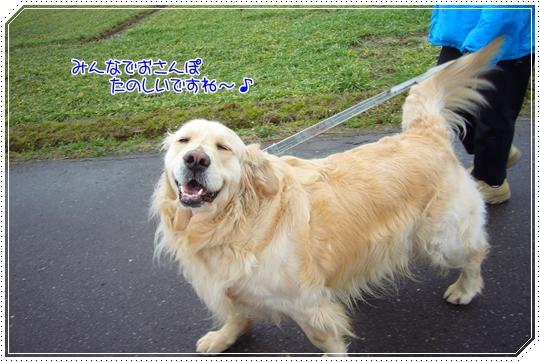 2010,1,23お散歩8