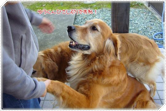 2010,1,24お散歩4