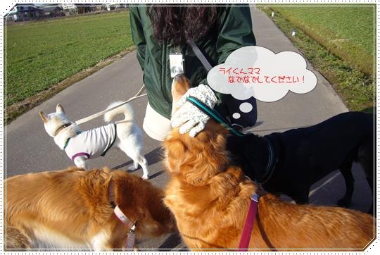 2010,1,26お散歩5