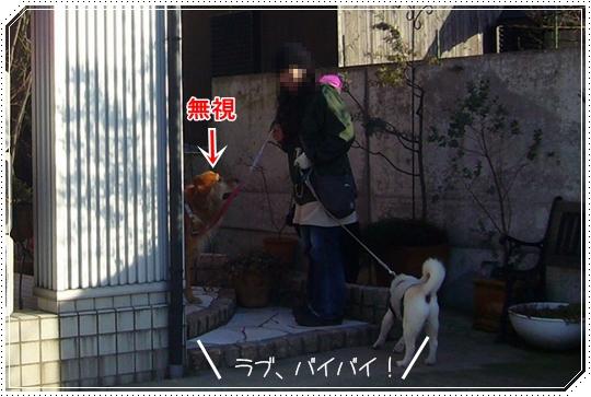 2010,1,26お散歩7