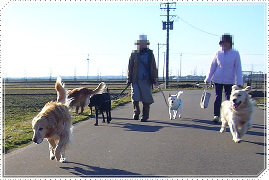 2010,1,27お散歩12