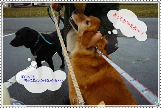 2010,1,28お散歩3