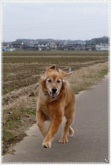 2010,2,1お散歩5