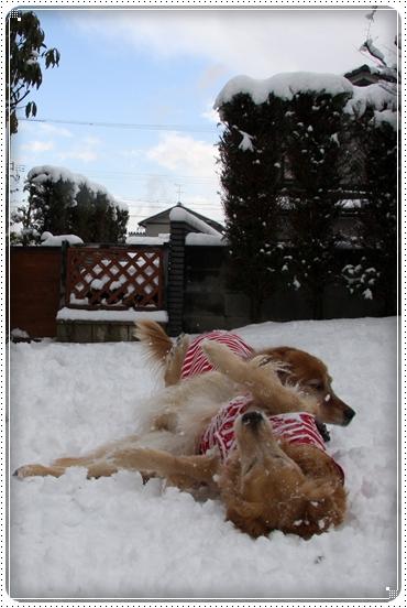2010,2,4雪遊び13