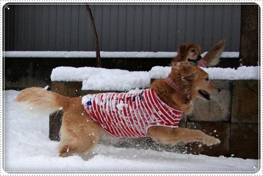 2010,2,4雪遊び9
