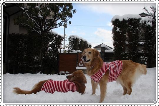 2010,2,4雪遊び14
