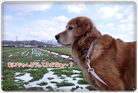 2010,2,7お散歩5