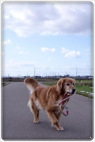 2010,2,7お散歩7
