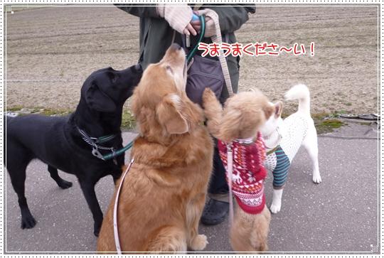 2010,2,9お散歩6