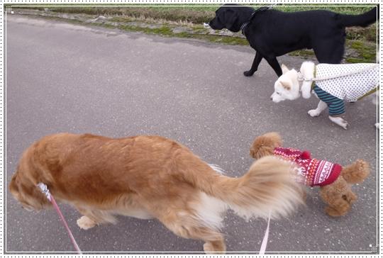 2010,2,9お散歩4