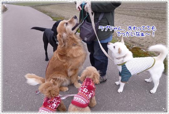 2010,2,9お散歩9