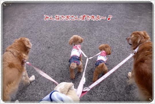 2010,2,13お散歩1