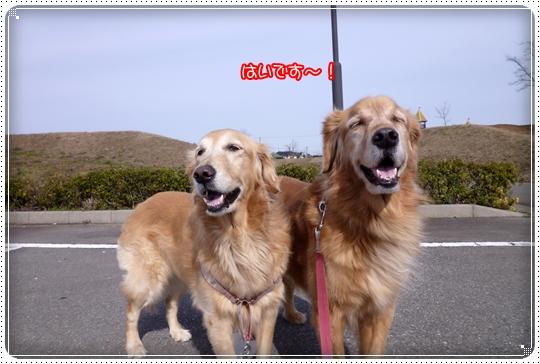 2010,2,14お散歩4