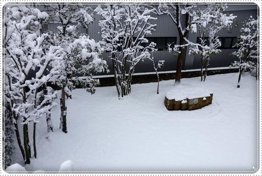 2010,2,17雪遊び7