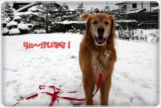 2010,2,17雪遊び16