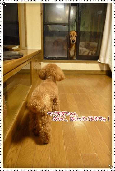 2010,1,18まつぶせ4