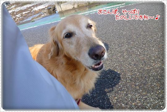 2010,2,20お散歩3