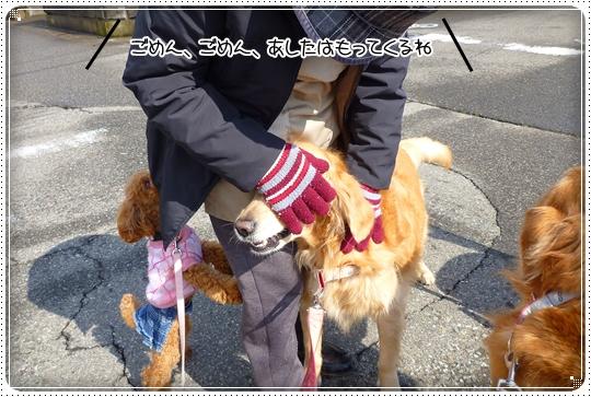 2010,2,20お散歩11