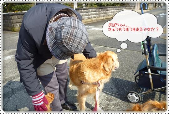 2010,2,20お散歩8