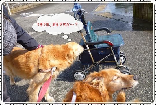 2010,2,20お散歩9
