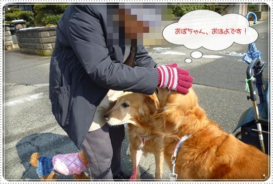 2010,2,20お散歩7