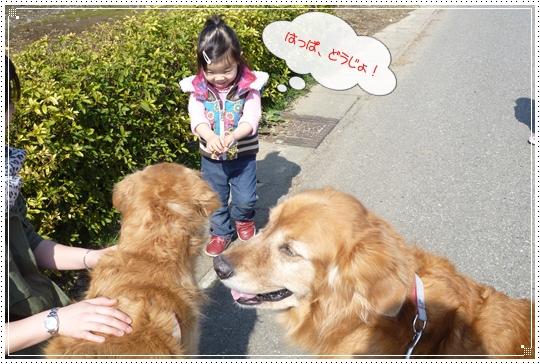 2010,2,23お散歩6