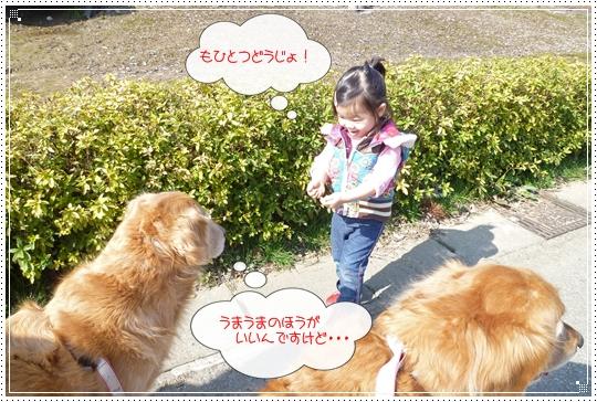 2010,2,23お散歩8