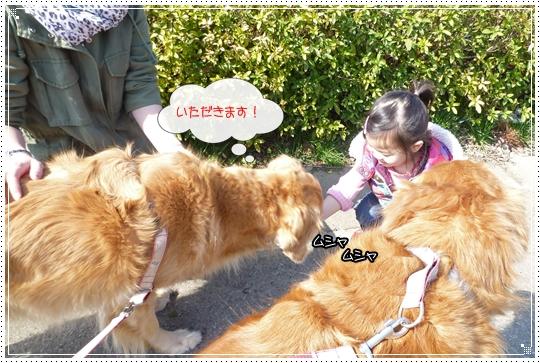 2010,2,23お散歩7