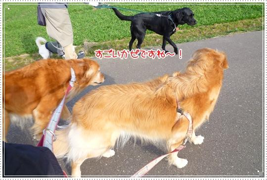 2010,2,25お散歩6