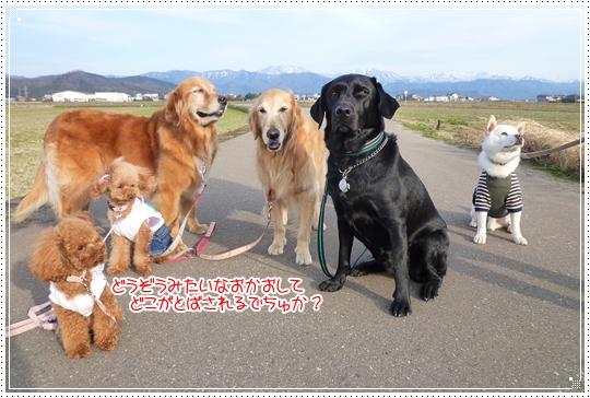 2010,2,25お散歩10