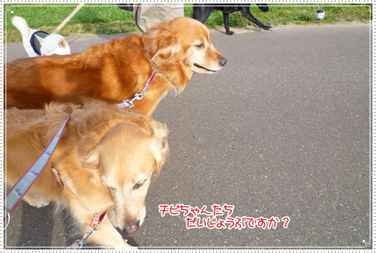 2010,2,25お散歩7