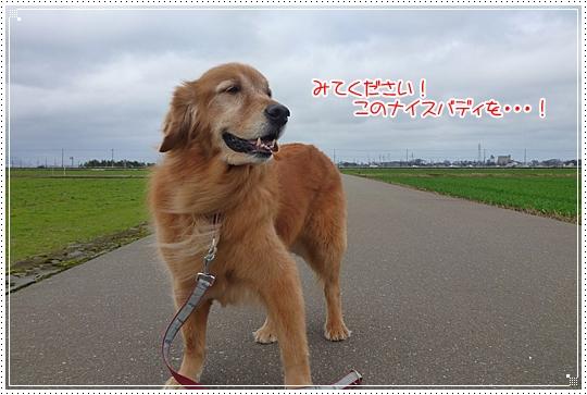 2010,2,27お散歩8