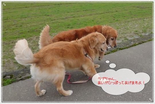 2010,2,27お散歩2