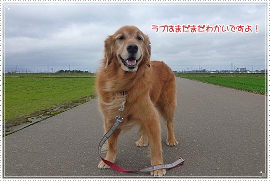 2010,2,27お散歩6