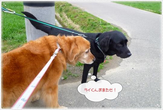 2010,3,2お散歩6