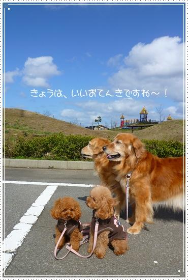 2010,3,3おひな祭り1