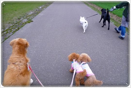 2010,3,5お散歩6